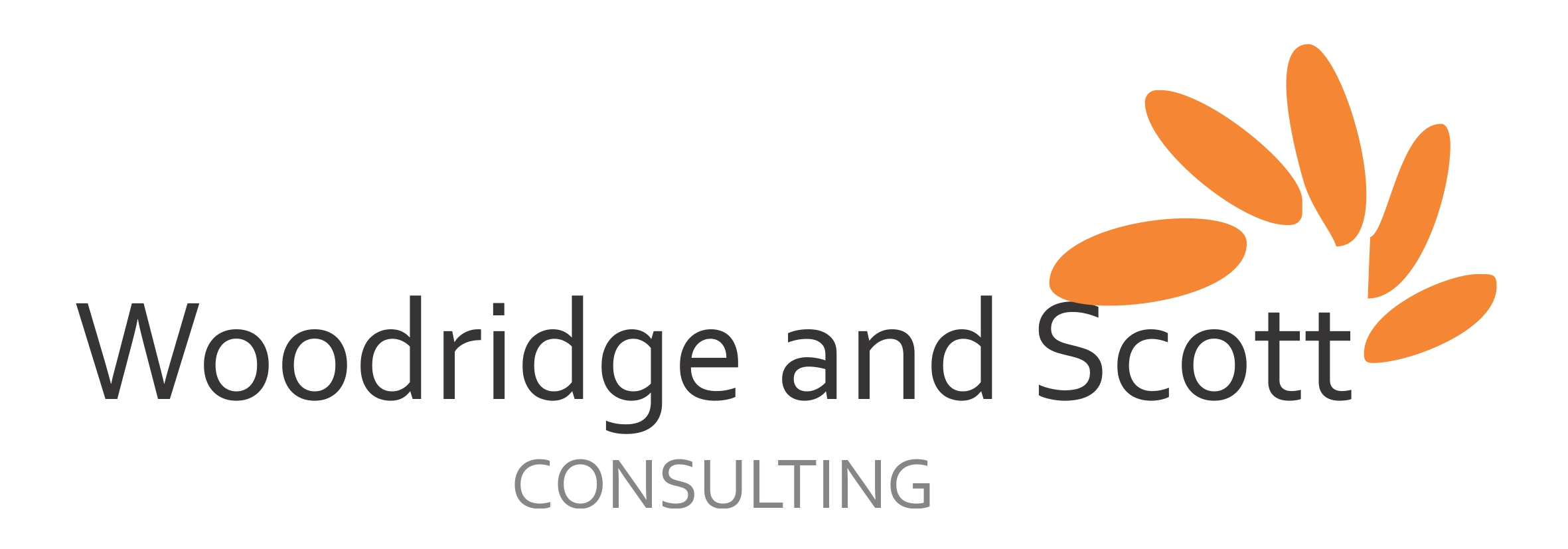 WOODRIDGE AND SCOTT Consulting Services